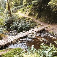 Holzbruecke auf dem Weg zum Salto do Prego