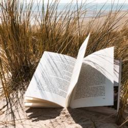 Reisebuch Tipps 33 Reisebücher die dein Fernweh stillen